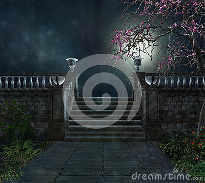 Free Mistery In A Dark Park Royalty Free Stock Photos - 33991808