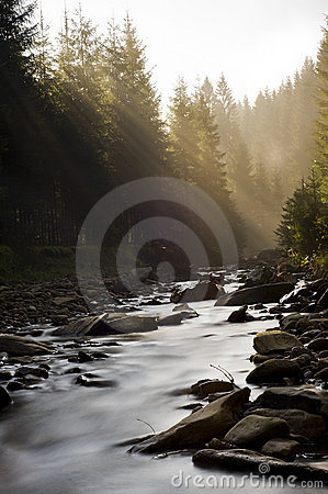 Free Mistic River Royalty Free Stock Image - 16723096