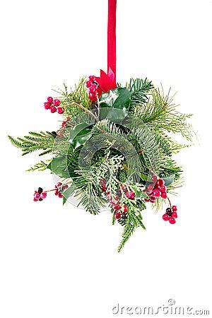 Free Mistletoe Stock Photos - 1276103