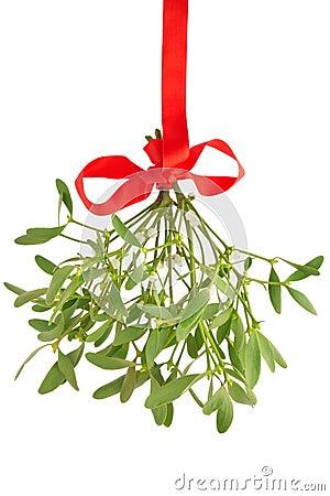 Free Mistletoe Stock Images - 17418624
