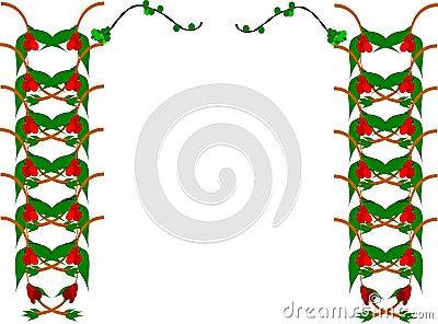 Mistletoe border elements
