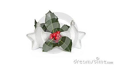 Mistletoe and stars