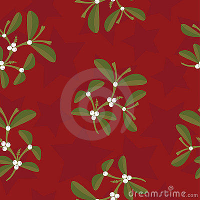 Mistletoe and stars pattern