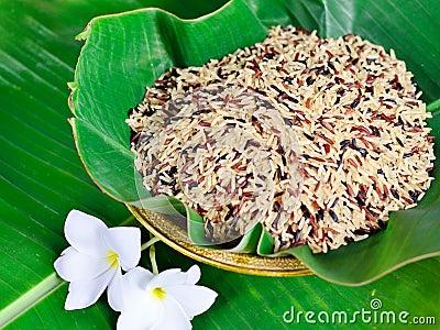 Misturado do arroz orgânico nutriente alto