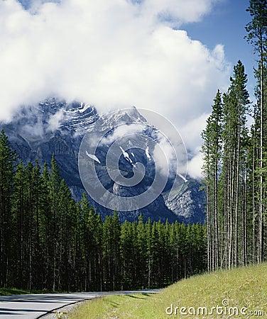 Free Misty Cascade Mountain Scene Banff Alberta Canada Stock Image - 2854001
