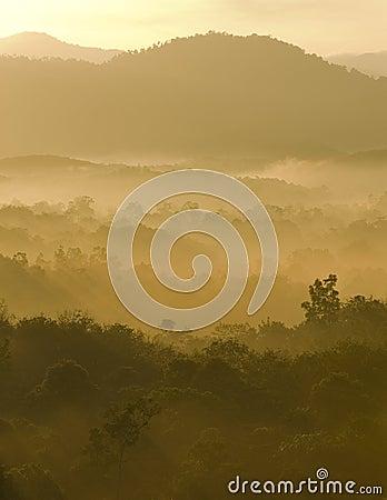Misty hilly area.
