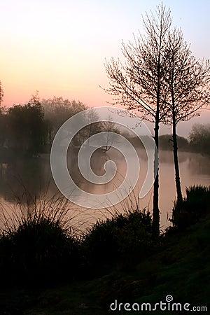 Misty lake at dawn