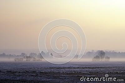 Misty moor landscape