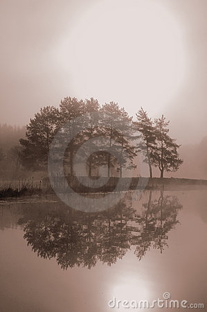 Free Misty Morning Royalty Free Stock Photos - 5603078