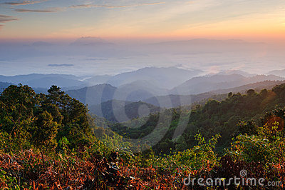 Misty Mountain at morning, chiangmai,Thailand