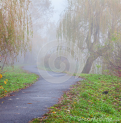 Misty path in autumn park
