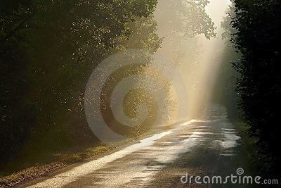 Misty rural road, sun rays through the trees