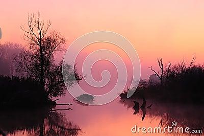 Misty sunrise (Mood)