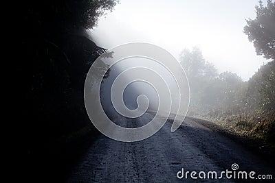 Misty track
