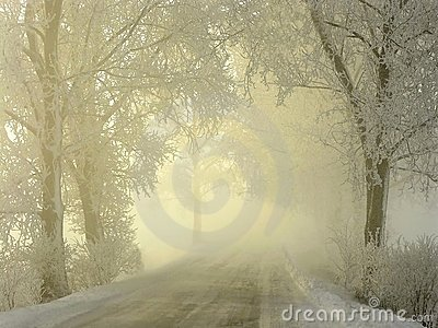 misty winter coutry road at sunrise