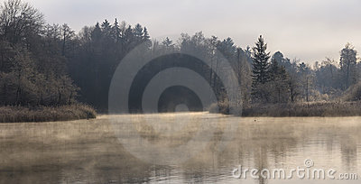 Misty Winter Morning at the Lake