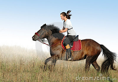 Mitfahrer und Pferd