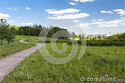 Lanscape Park Mitinsky
