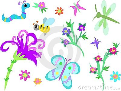 Mix of Insects. Flowers, and Plants