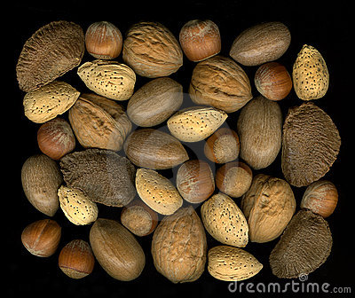Mix nuts in shells: walnut, hazelnut, pecan, almon