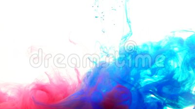 Mix Red And Blue Color Paint Ink Drops In Water Slow Motion Full Hd Video White Background With Copy Space