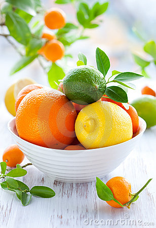 Free Mixed Citrus Fruit Stock Photo - 16608390