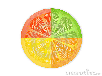 Mixed citrus fruit slices