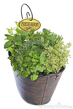 Mixed Fresh Herbs in a Basket