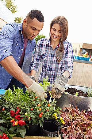 mixed race couple planting rooftop garden together 52859132 - 10 Creative Gifting Ideas For Your Anniversary