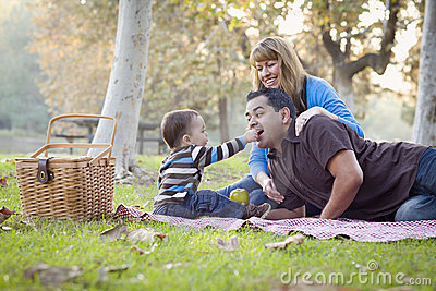 Mixed Race Ethnic Family Having Picnic In The Park