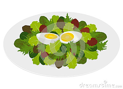 Mixed salad leaves  with hard boiled egg