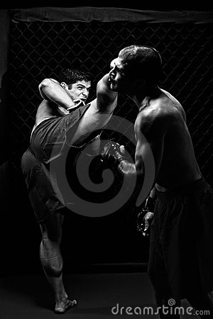 Free MMA Royalty Free Stock Photography - 16374967