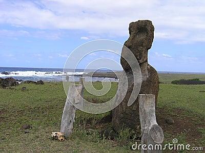 Moai wielkanoc wyspy