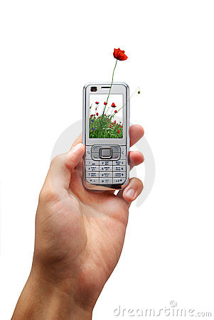 Mobile phone of ecology