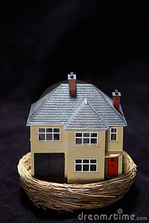 Model house in a nest