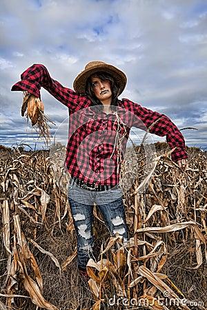 Free Model Scarecrow Stock Photo - 26901610