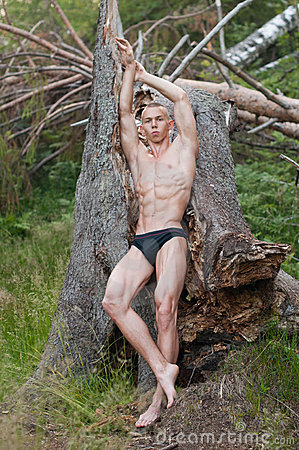 Model with with the tree