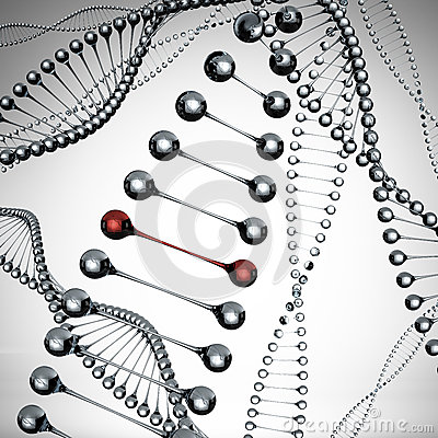 Free Models Of The Dna Molecule Royalty Free Stock Images - 27358779