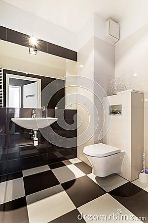 Modern architecture contemporary, bathroom