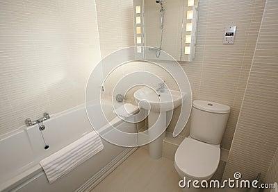 Modern Bathroom Suite Interior