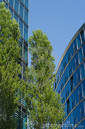 Modern buildings and green trees.