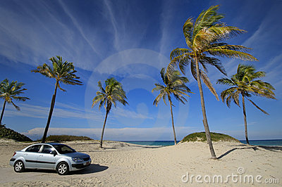Modern car on tropical beach
