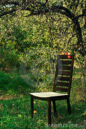 Modern chair in the orchard