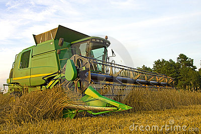 Modern combine harvester at work Editorial Stock Photo