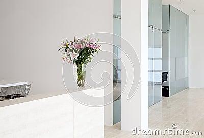 Modern company interior
