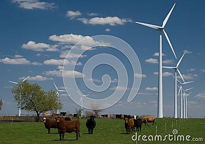 Modern Farming (multi-tasking)