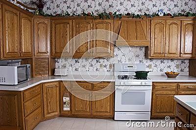 Modern Home Kitchen, Stove, Oak Cabinets Interior