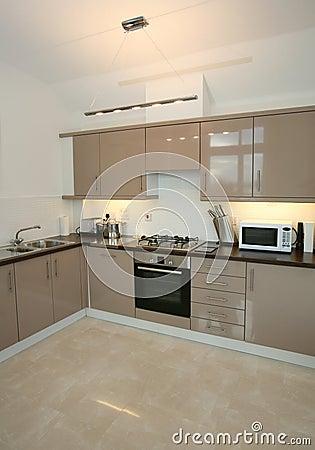 Modern Luxury Home Kitchen Interior