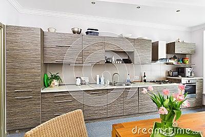 Modern minimalism style Kitchen interior