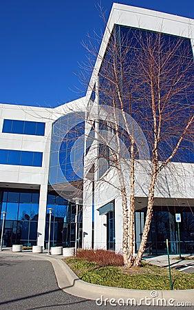 Modern Office Building 15